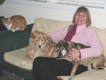 Seattle pet sitting, animal communication, and pet first aid